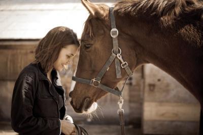 Soins pour chevaux Roquebrune-sur-Argens