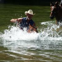 Entrainement chevaux au centre équestre près de Saint-Raphaël
