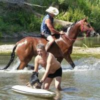 Entraînement chevaux au centre hippique près de Draguignan