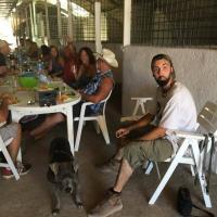 Coaching pour chevaux et cavalier à Roquebrune-sur-Argens