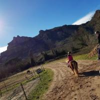 Cours d'équitation non loin de Saint-Raphaël